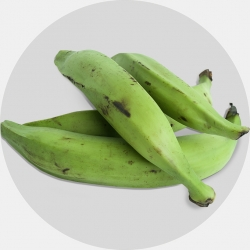 Green Plantain (1 carton / Net weight ca 20 kg)