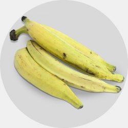 Yellow Plantain (1 carton / Net weight ca 20 kg)