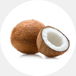 Coconut (1 carton / Net weight ca 25 kg)
